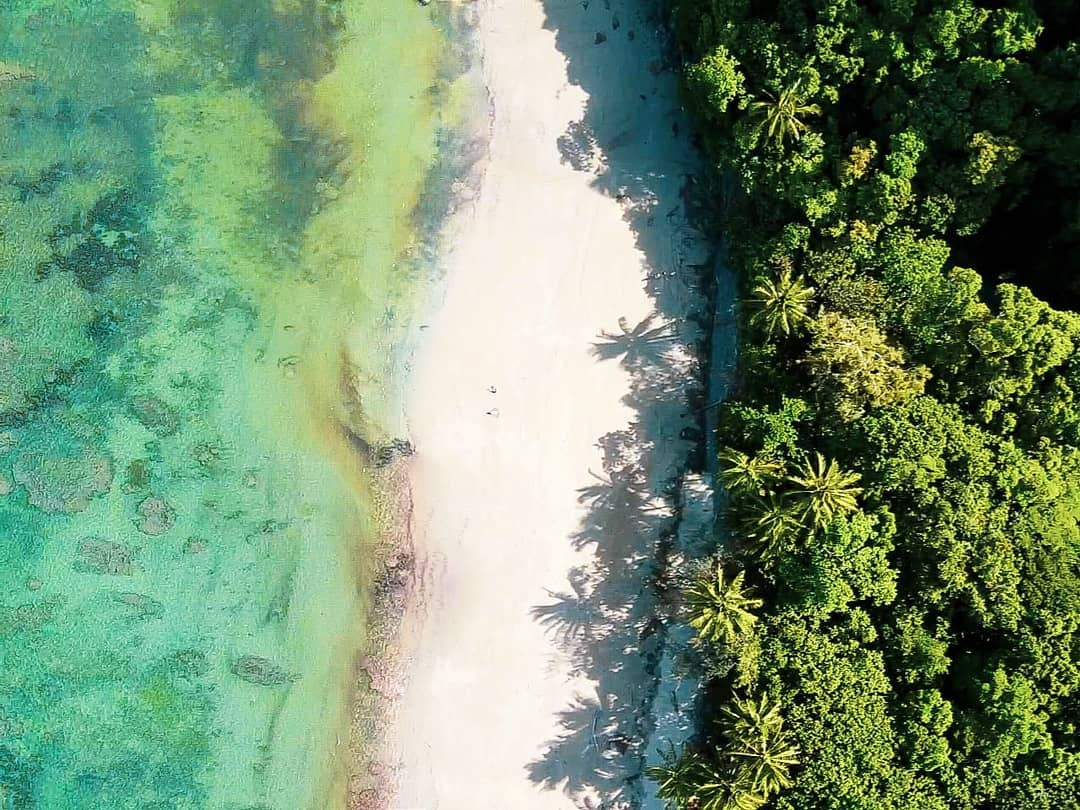 drone shot of cape tribulation beach