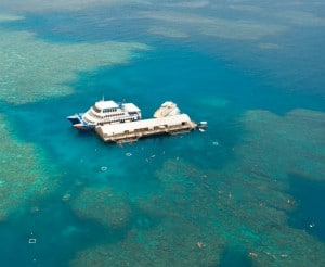 Sunlover Reef Cruise_Pontoon